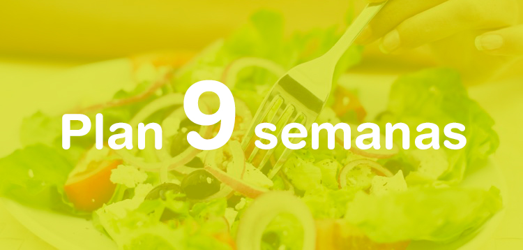 Plan dietético-nutricional de 9 semanas 2018
